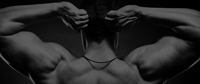 Do Muscles Burn More Calories Than Fat? | Best New Supplements