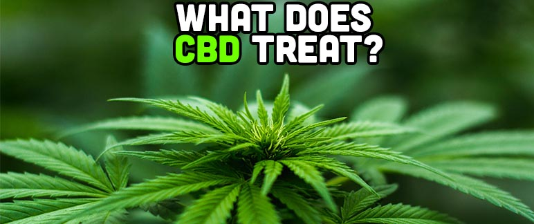 What Does CBD Treat - Are Cannabis Supplements Worth It?
